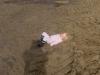 pienen-rakentajan-lepotauko-hiekalla